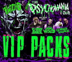 The Psychomania Tour 2017 VIP Package